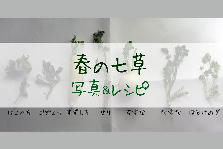 春の七草 写真&レシピ